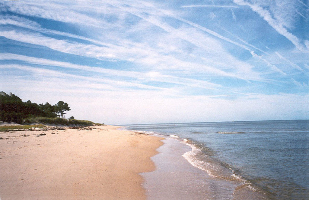 Beach properties for sale
