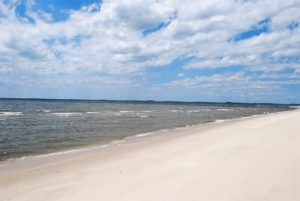 Eastern Shore Beach